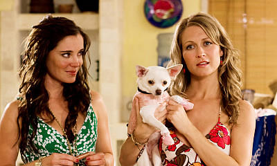 Beverly Hills Chihuahua Filmcheck