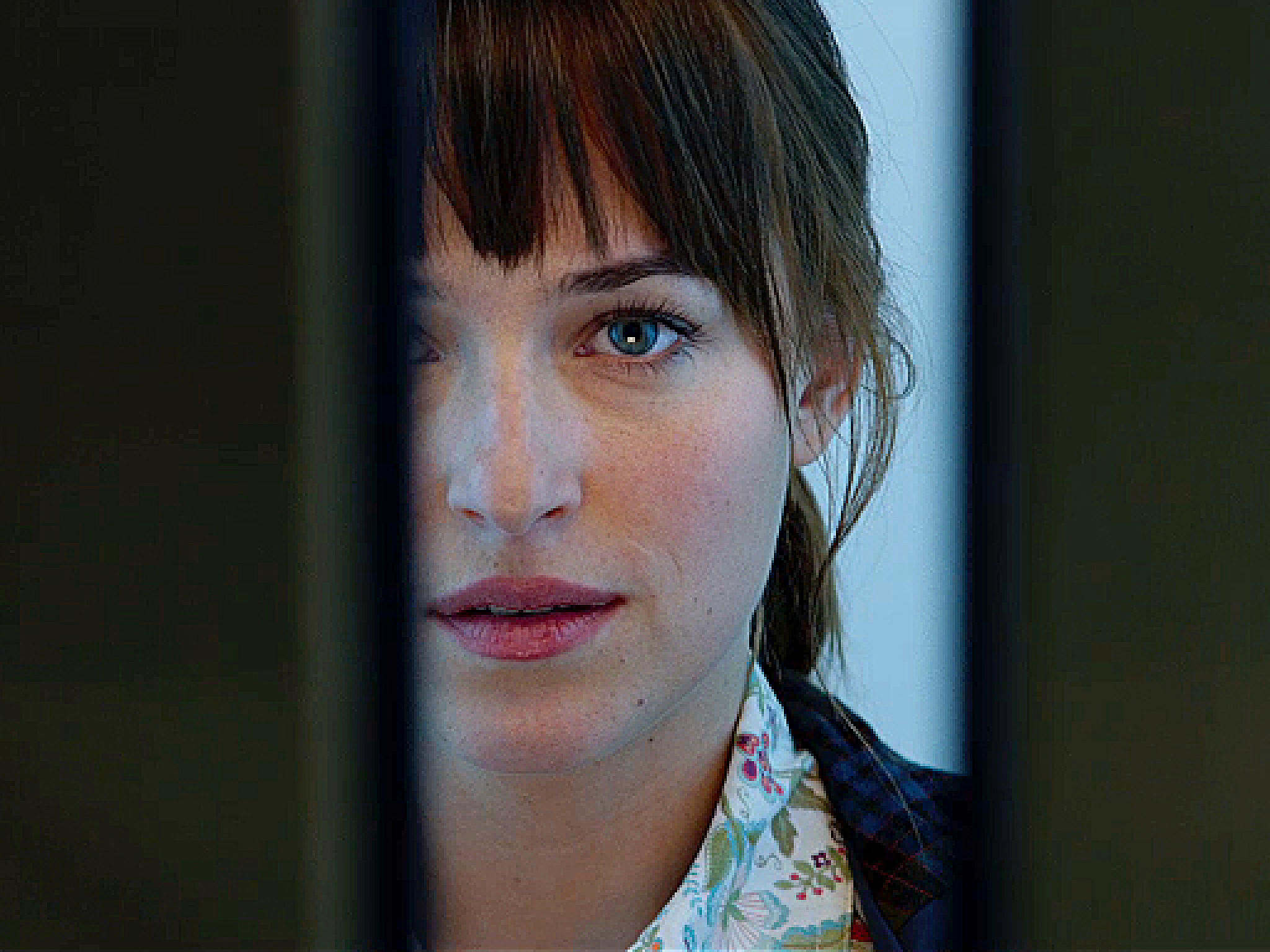 Fifty Shades of Grey Trailer Kommentar