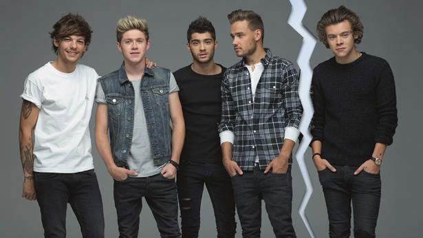 One Direction: Niall Horan, Zayn Malik, Liam Payne, Louis Tomlinson und Harry Styles