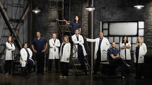 'Grey's Anatomy': Spoiler zu Staffel 12