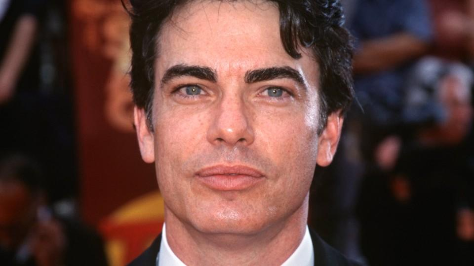 Biografie von Peter Gallagher