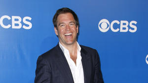 Michael Weatherly: Insiderwissen