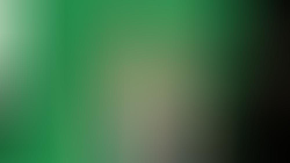 Bibi Heinicke bei Madame Tussauds: Das kann ihr Hologramm